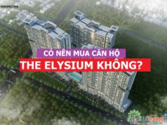 co-nen-mua-can-ho-the-elysium-khong